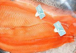 Certificación ASC crea nuevo estándar para alimentos de salmón