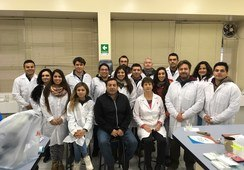 Detallan enfermedades del abalón en tiempos de cambio climático