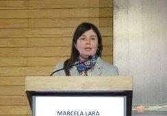 Caligus: La situación en la región de Magallanes es preocupante