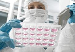 Laboratorio farmacéutico chileno abre hacia Perú envío de vacunas para peces