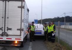 Detectan camión que transportaba salmón sin acreditación de origen legal
