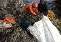 Los nuevos proyectos salmonicultores para mejorar la mitigación climática