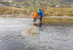 Dokumenterer fiskevandring i et nytt prosjekt