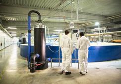 AquaMaof describe las ventajas de sus sistemas de recirculación acuícola