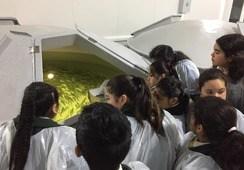 Alumnos de escuela de Pargua visitan instalaciones de Skretting