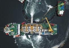 En Chile: Así operará el tratamiento de shock térmico contra el Caligus