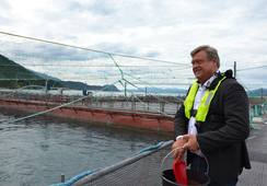 Nesvik out of office but perhaps not aquaculture