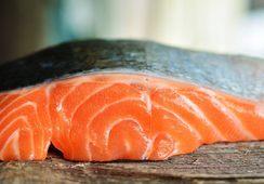 Forskere anbefaler mindre laks og mer effektiv fôrutnyttelse