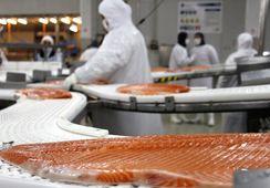 Los Lagos: Buscan fortalecer polo logístico asociado a envíos de salmón