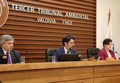 Tribunal anula Resolución Ambiental de piscicultura en Hualaihué