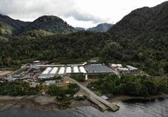Mowi suspende obras de ampliación de Piscicultura Fiordo Aysén