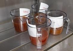 Første egenproduserte stamfisk av rognkjeks strøket hos Namdal Rensefisk