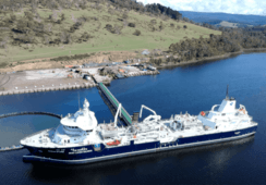 Realizan exitosa transferencia de smolts a wellboat más grande del mundo