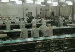 Trabajadores de Salmones Blumar en cuarentena alertas por pago de sueldos