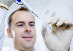 Selección genómica duplica supervivencia de la trucha ante flavobacteriosis