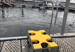 Nido Robotics satser på robotutleie