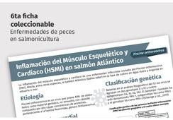 Ya está disponible nueva ficha técnica sobre HSMI en salmón Atlántico
