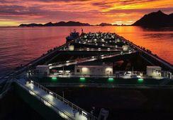 Megaproyecto Havfarm recibe primera entrega de salmón