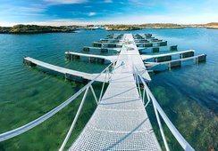 126 millioner kroner til 12 innovasjonsprosjekter i havnæringene