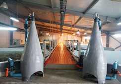 Acuinor avanza en certificaciones de sustentabilidad para cultivo de seriola