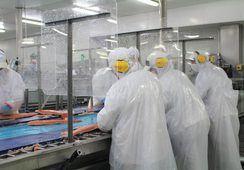 El acuerdo entre Blumar y trabajadores de la planta salmones Talcahuano