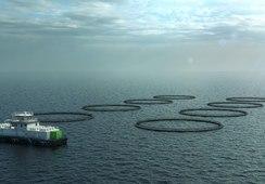 Kleiva Fiskefarm investerer i klimateknologi