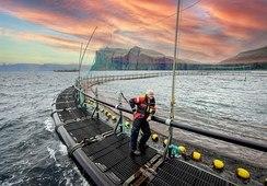 Derfor vil Hiddenfjord satse på lukkede anlegg
