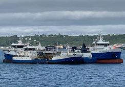 Patagonia Wellboat detiene sus operaciones tras inicio de huelga de trabajadores
