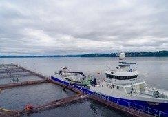 Armasur propone incorporar extranjeros en naves chilenas por falta de dotación