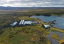 StofnFiskur endrer navn til Benchmark Genetics Iceland