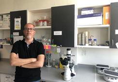 Desarrollan kit de detección de respuesta inmune para salmónidos