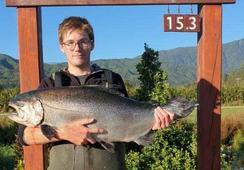 Precio récord para salmón de cultivo que alcanzó un peso superior a 15 kilos