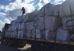 Retiran casi 6 toneladas de residuos de la costa de Isla Cailín