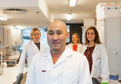 Har funnet ut hvordan fôret påvirker genene til laksen