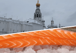 Dos plantas salmonicultoras de Quellón son desbloqueadas por Rusia