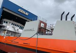 Tecnología de nueva nave para tratar Caligus  evita daño ambiental por antiparasitarios