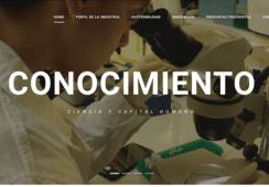 Lanzan plataforma web para entregar mayor conocimiento sobre salmonicultura