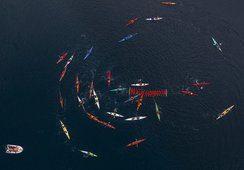 Activistas chilenos y argentinos se manifiestan en contra de la salmonicultura