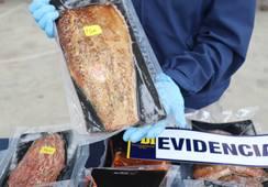 Decretan prisión preventiva para imputados por robo de mortalidad de salmones