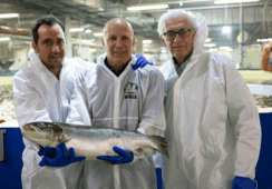 AquaMaof clinches salmon RAS contracts in Russia and Kazakhstan