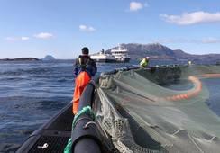 Meglerhus anbefaler kjøp av sjømataksjer