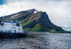 Nytt ILA-tilfelle i Troms og Finnmark