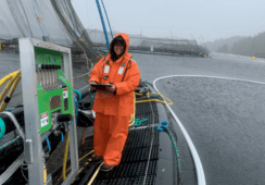 Focus on plankton pays dividends for Mowi