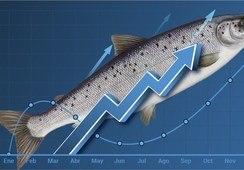 Siete productores de salmón chileno liderarán importante rueda de negocios