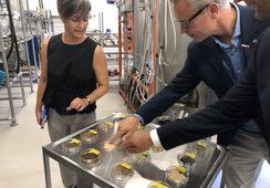 Stor interesse for testing av nye fôrråvarer