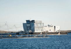 Enova støtter 28 nye industriprosjekt