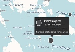 Påvist ILA i Flatanger