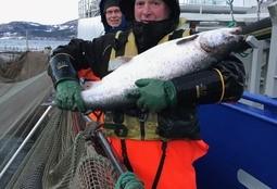 Nordfjord Forsøksstasjon med rekord-tilvekst