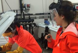 Colder water eliminates delousing fish deaths in lab