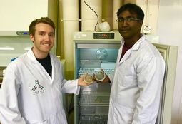 Microalgae 'trained' to grow and carry fish vaccines